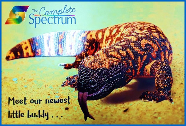 Spectrum Printing Enriches Direct Mail with MGI JETvarnish 3D